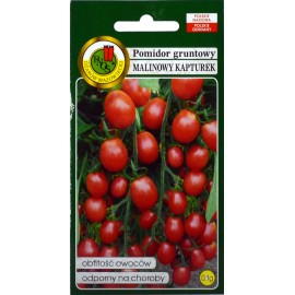 PNOS Pomidor Malinowy Kapturek 0,1g