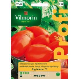 VIL Pomidor szklarniowy Big Mama F1 0,1g PROFI