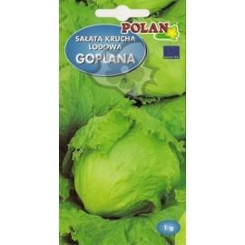 PL Sałata lodowa Goplana 1g