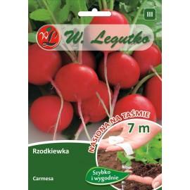 LG Rzodkiewka Carmesa na taśmie 7m
