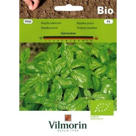 Vilmorin BIO Bazylia Genovese 1g