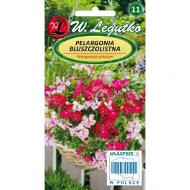 LG Pelargonia bluszczolistna SpeedyF2 mix 5n