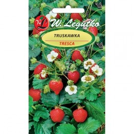LG Truskawka Tresca 0.05g