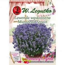 LG Lawenda wąskolistna Munstead Strain 0,2g DO