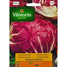 VIL Cykoria sałatowa Rouge de Verone 0,5g