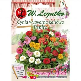 LG Cynia karłowa Pepito 0,5g DO