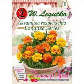 Legutko Aksamitka Bonanza Series 0,5g DO