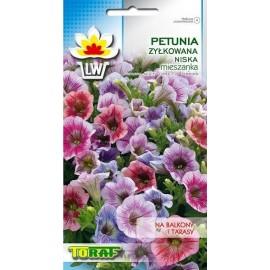 TORAF Petunia żyłkowana niska mix 0,1g