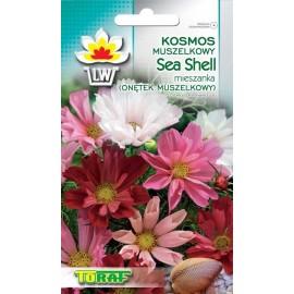 TORAF Kosmos muszelkowy Sea Shell 0,5g