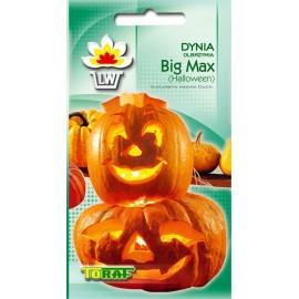 TORAF Dynia olbrzymia Big Max 3g