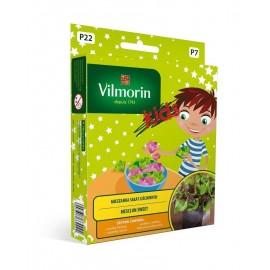 VIL KIDS MiniOgródek Mix sałat liściowych