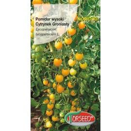 TOR Pomidor Cytrynek Groniasty 0,1g
