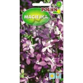 PL Maciejka 5g
