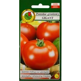PNOS Pomidor Gigant 1g