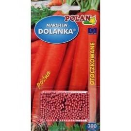 PL Marchew Dolanka OT 300szt