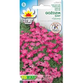 TORAF Goździk siny różowy 0,2g