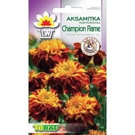 TORAF Aksamitka Champion Flame 0,5g