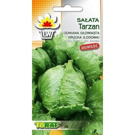 TORAF Sałata lodowa Tarzan 1g