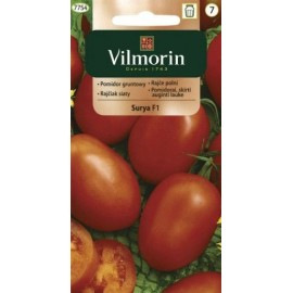 Vilmorin Pomidor gruntowy bardzo wczesny Surya F1 200mg