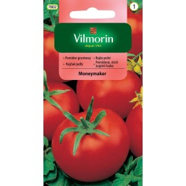 VIL Pomidor gruntowy i pod osłony Moneymaker 0,5g