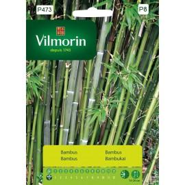 VIL Bambus mrozoodporny 1g