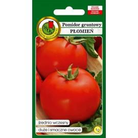 PNOS Pomidor gruntowy i pod osłony Płomień 1g