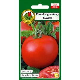 PNOS Pomidor gruntowy wczesny Jawor 1g