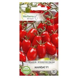 WA Pomidor pod osłony Mandat F1 20szt