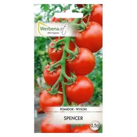 WA Pomidor wysoki Spencer 0,5g