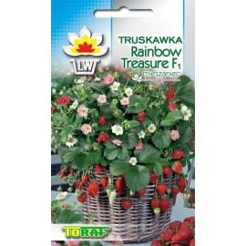 TORAF Truskawka Rainbow Treasure F1 5szt