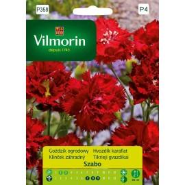 VIL Goździk ogrodowy Szabo Picotte czerwony 0,1g