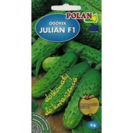 PL Ogórek Julian F1 5g