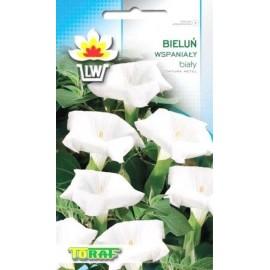 TORAF Bieluń wspaniały biały, Datura 0,3g