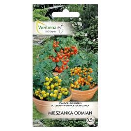 WA Pomidor typ cherry mix odmian 0,5g