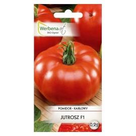 WA Pomidor karłowy wczesny Jutrosz F1 0,2g