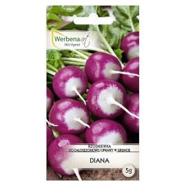 WA Rzodkiewka Diana 5g do całosezonowej uprawy