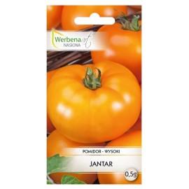 WA Pomidor wielkoowocowy Jantar 0,5g