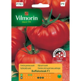 VIL Pomidor gruntowy wysoki Buffalosteak F1 10szt