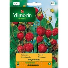 VIL Poziomka Mignonette 0,1g wyjątkowo aromatyczna