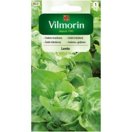 VIL Sałata masłowa Lento 0,5g do całosezonowej uprawy