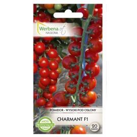 WA Pomidor pod osłony Charmant F1 20szt