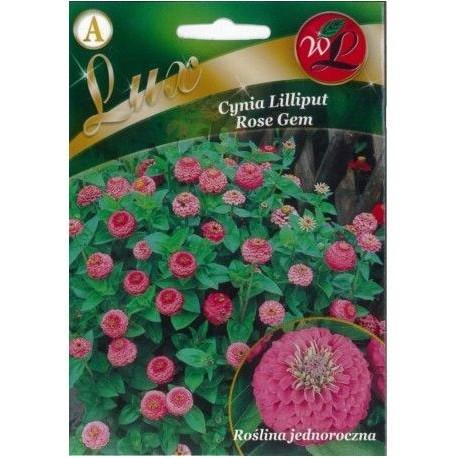 LG Cynia Liliput Rose Gem 0,5g LUX