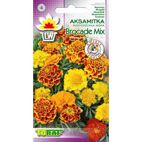 TORAF Aksamitka niska Brocade mix 1g