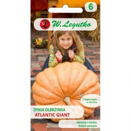 LG Dynia olbrzymia Atlantic Giant 3g