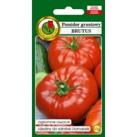 PNOS Pomidor gruntowy wielkoowocowy Brutus 0,5g