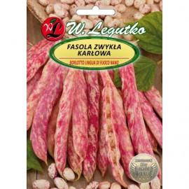 LG Fasola szparagowa Borlotto lingua di fuoco nano 40g