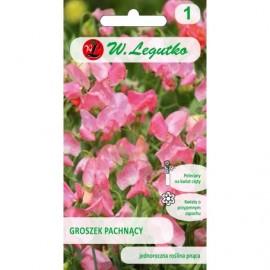 LG Groszek pachnący róż 3g