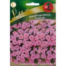 LG Petunia ogrodowa Kaskada różowa 0.02g