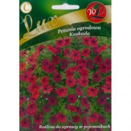 LG Petunia ogrodowa Kaskada purpurowa 0.02g