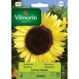 VIL Słonecznik Lemon Queen 0,5g